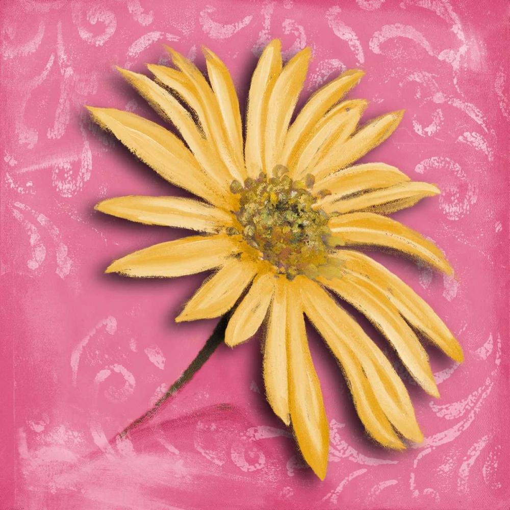 kunstdruck auf leinwand 100 baumwolle blooming daisy ii. Black Bedroom Furniture Sets. Home Design Ideas