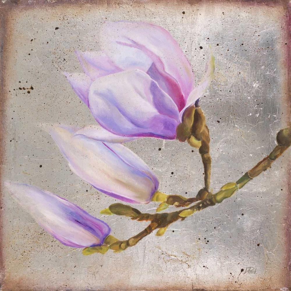 kunstdruck auf leinwand 100 baumwolle magnolia auf silver. Black Bedroom Furniture Sets. Home Design Ideas