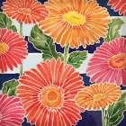 Gerbera Daisy Garden I