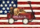 America Friends