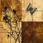Wings II - Steve Butler
