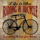 Life is Like Riding a Bicycle - Maria Donovan