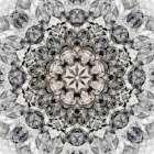 Black White Kaleidoscope