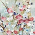 Cherry Blossoms -  Tava Studios