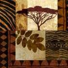 Acacia Sunrise II