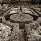 Tuscan Giardini - 1