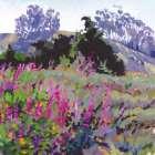 Spring Haze, Eucalyptus on the Ridge