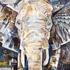 Elephants Gaze
