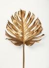 Monstrea Gold Leaf -  Design Fabrikken