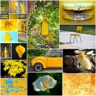 Hello Sunshine Collage