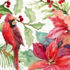 Poinsettia and Cardinal II - Lanie Loreth