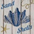 Nautical Shells I