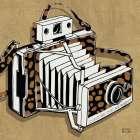 Analog Jungle Camera