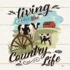 Farm Life II Country