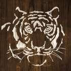 White Tiger on Dark Wood - Chris Paschke