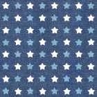 Stars and Stripes Dark Pattern III - Beth Grove