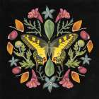 Butterfly Mandala III Black -  Wild Apple Portfolio