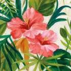 Tropical Jewels II v2 Pink Crop