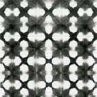 Aquarelle Black and White XIII