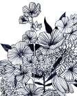 Wildflower Tangle III