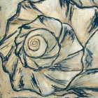 Navy Seashell Spiral I - Megan Meagher
