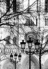 Notre Dame Cathedral II - Laura DeNardo
