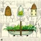 Garden Trug - Ginny Joyner
