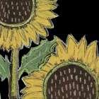 Flower Song III