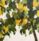 Lemons - Melissa Lyons
