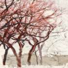 Rusty Trees I