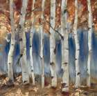 Copper and Blue Birch Trees, Square 1
