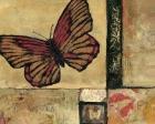 Butterfly in Red - Judi Bagnato