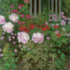 Flowers and Garden Fence