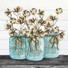 Blue Jars - Cotton Stems - Cindy Jacobs