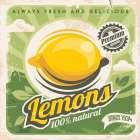 Lemons -  Braun Studio