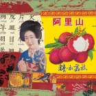 Reflet de Chine V - M. Sigrid