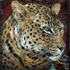 Portrait de leopard - Fabienne Arietti