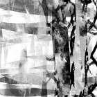 Black and White III