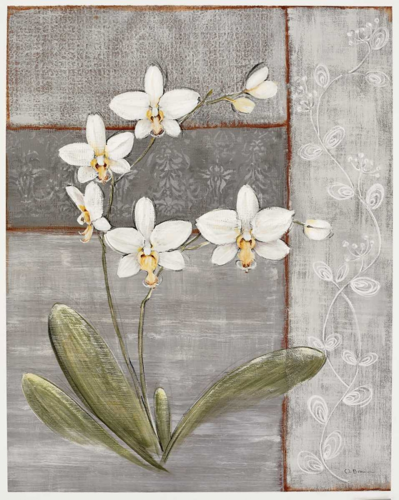Orchid Shimmer II