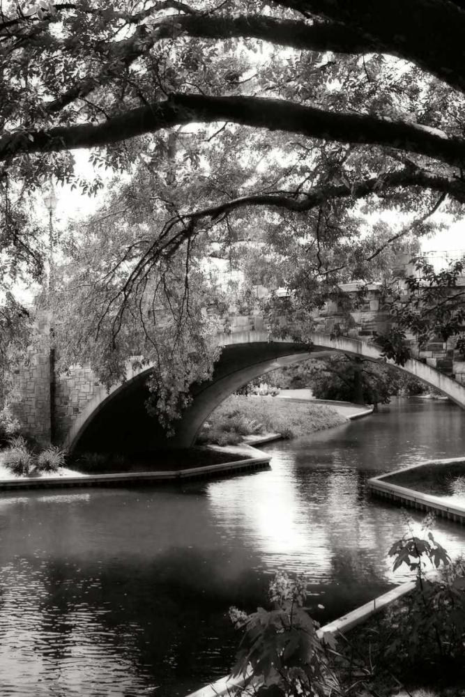 Garden Bridge II