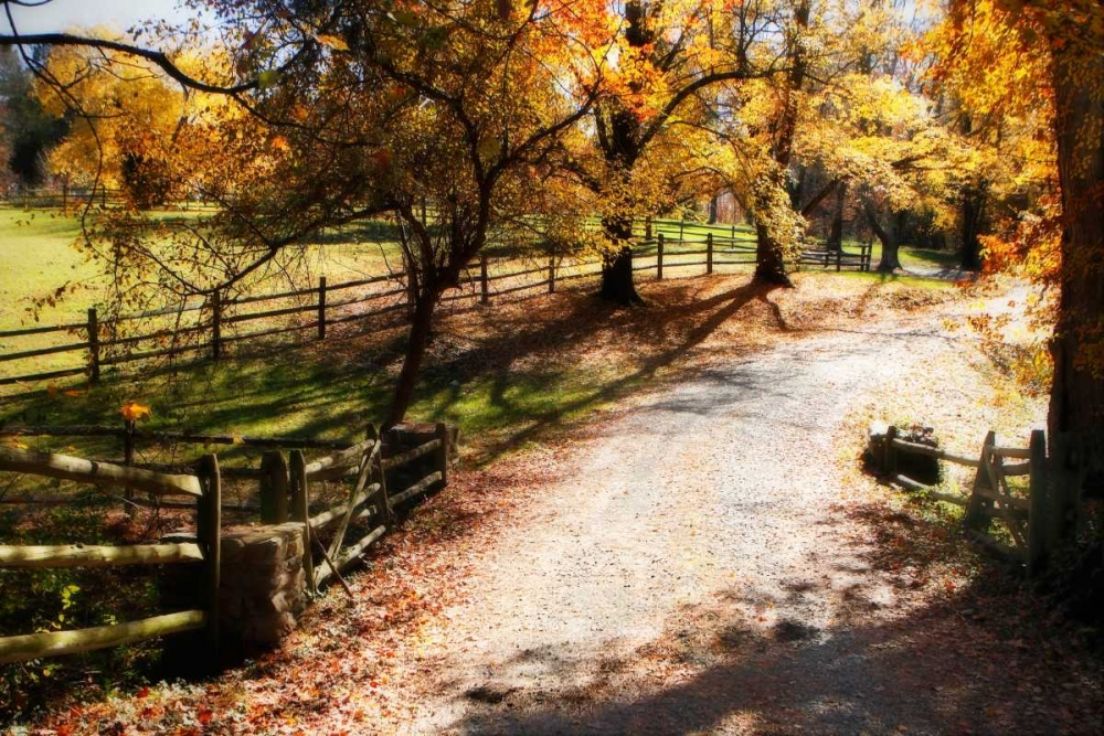 Autumn on Kent Farm II