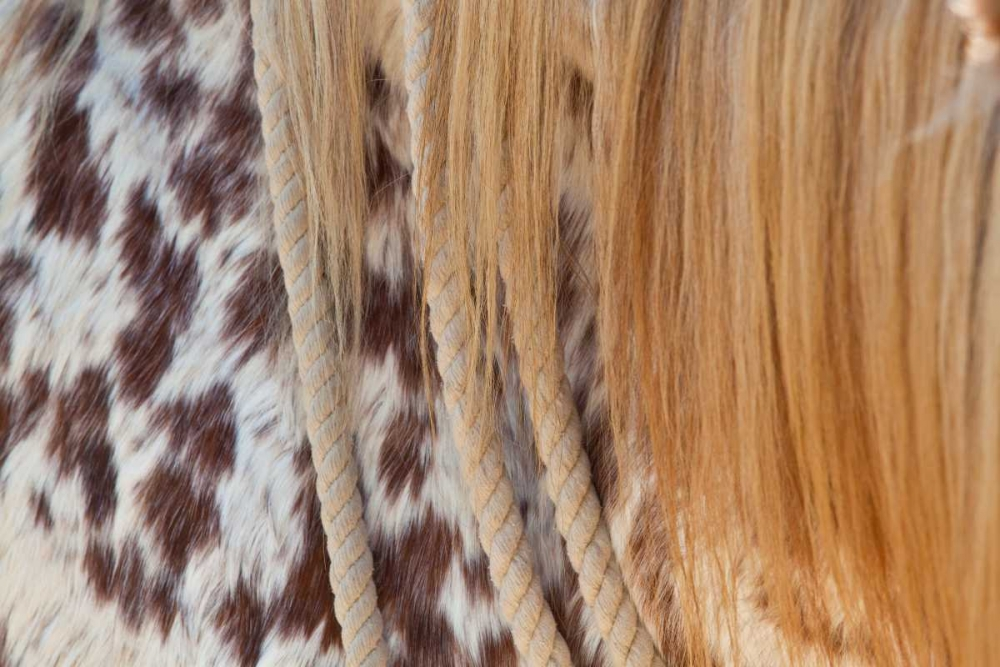 Horse Up Close II