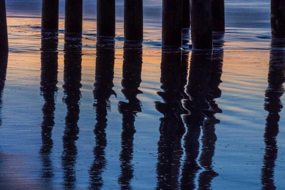 Ventura Pier Reflections I