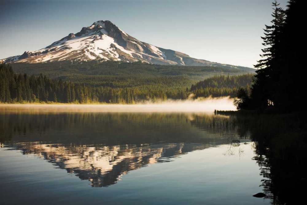 Mt. Hood in Summer II
