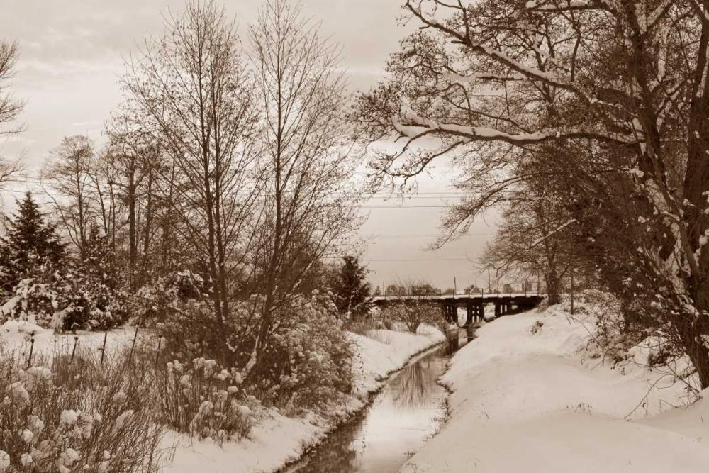 Winter Scenic I