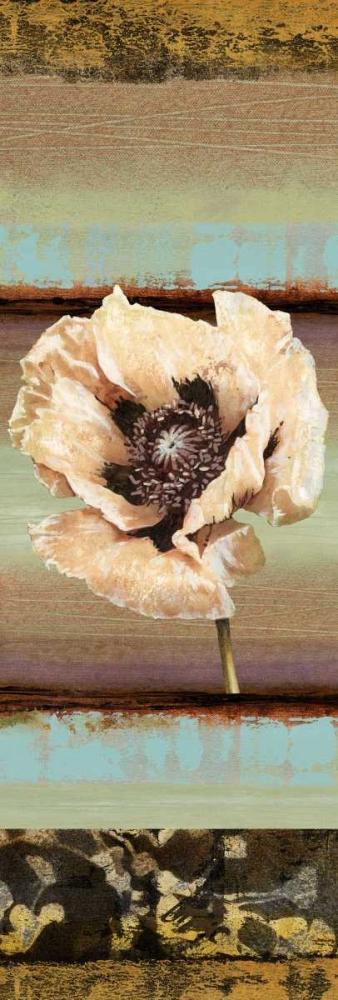Elemental Poppy I