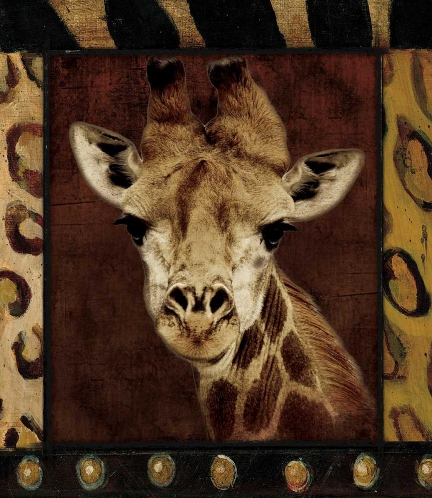 Giraffe Bordered