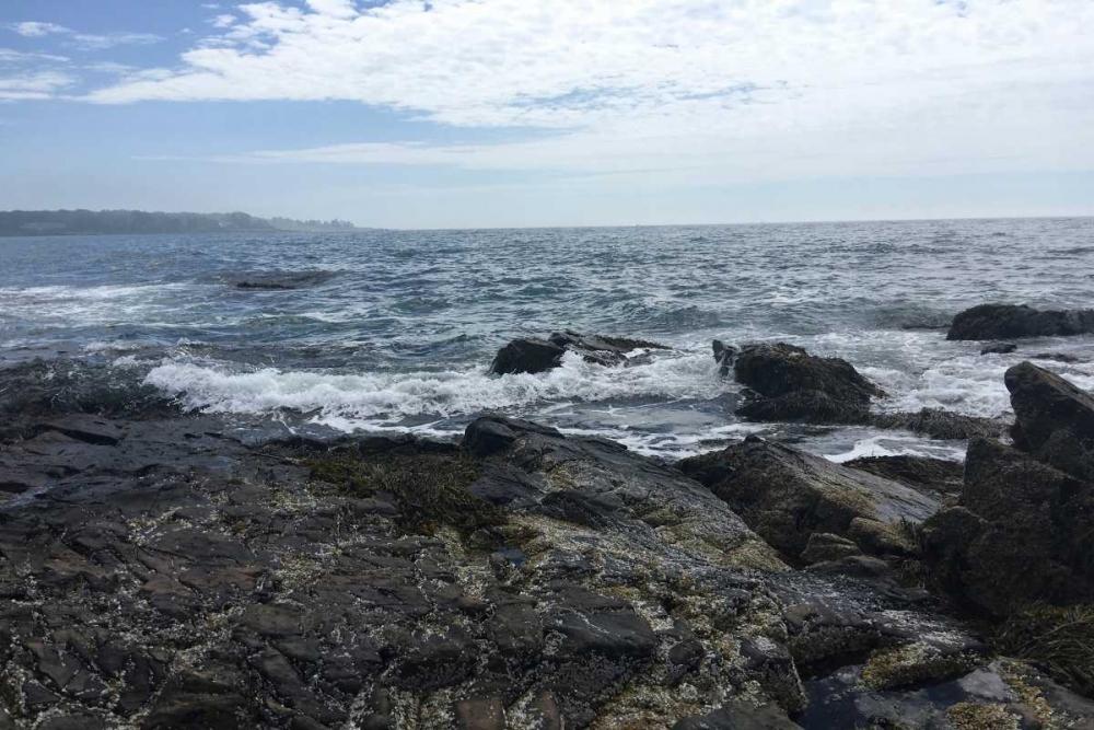 Morning Tide 3