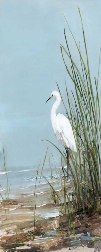 Island Egret II