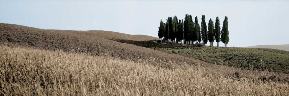 Val d'Orcia Pano - 3